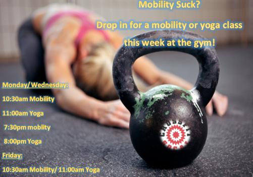 yoga mobility
