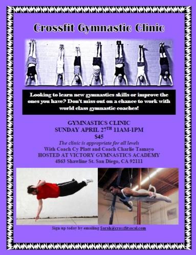 gymnastics clINIC PIC
